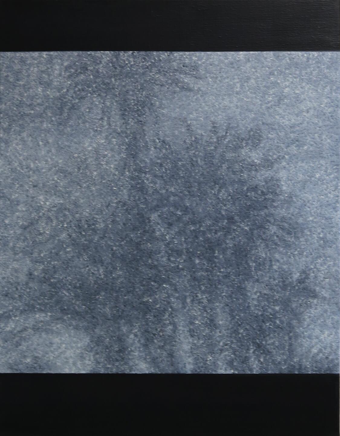 Palmtree II - Oil on Canvas, 90 x 70 cm, 2013