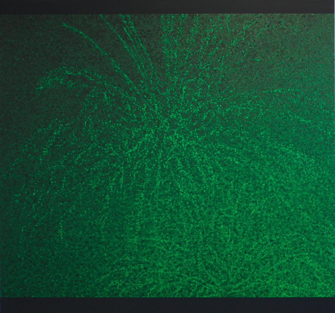 Palmtree V - Oil on Canvas, 150 x 160 cm, 2013